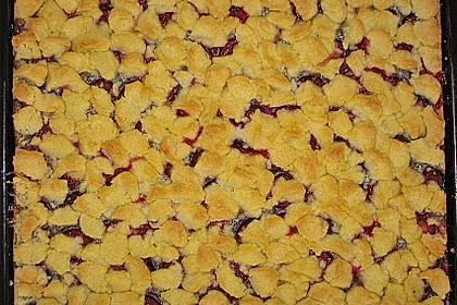 Zwetschgenkuchen mit Mohnquark + Butterstreuseln 14