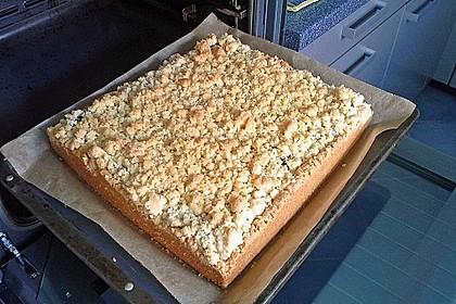 Zwetschgenkuchen mit Mohnquark + Butterstreuseln 21