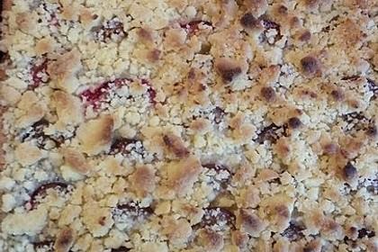 Zwetschgenkuchen mit Mohnquark + Butterstreuseln 35