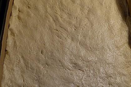Rhabarberkuchen vom Blech 2