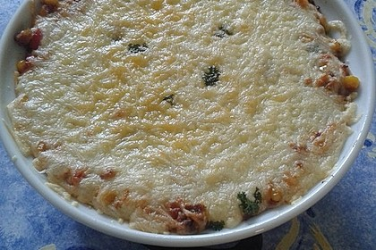 Mells mexikanische Enchilada-Lasagne 79