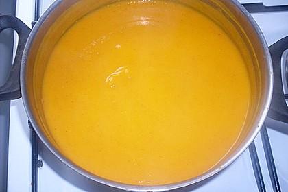 Kürbis-Curry Suppe 26