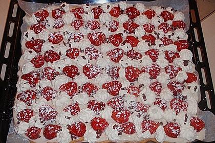Erdbeer-Vanille-Kuchen 1