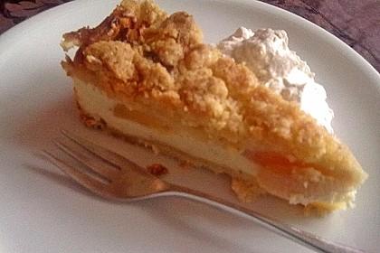 Omas Quark-Apfel-Streusel-Torte 27