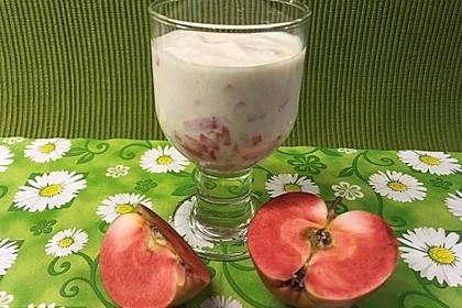 Zimt-Apfel-Joghurt 12