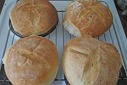 Bruschetta - Brot 9