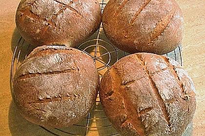 Bruschetta - Brot 19