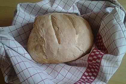 Bruschetta - Brot 15
