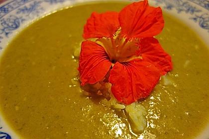Staudensellerie Creme - Suppe 10
