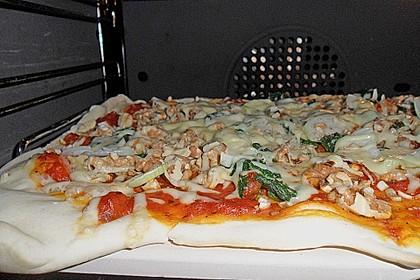 Vegetarische Pizza vom Stein 1