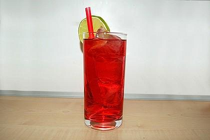 Wodka Cranberry