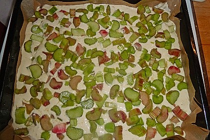 Rhabarber-Buttermilch-Quark Kuchen 7
