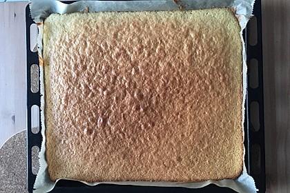 Kirsch - Schmand - Blechkuchen 54