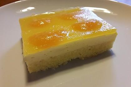 Kirsch - Schmand - Blechkuchen 1