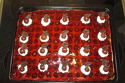 Kirsch - Schmand - Blechkuchen 14