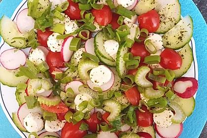 Tomate-Mozzarella-Avocado Salat 2