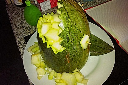 Melonen-Hai 84