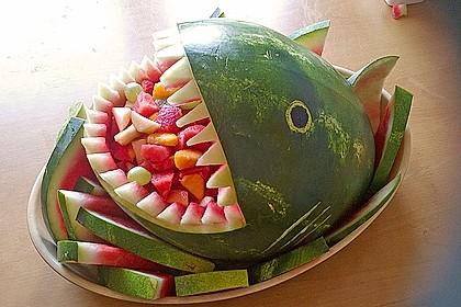 Melonen-Hai 24