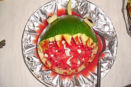 Melonen-Hai 100