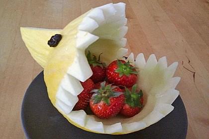 Melonen-Hai 76