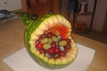 Melonen-Hai 52