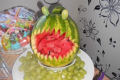 Melonen-Hai 101
