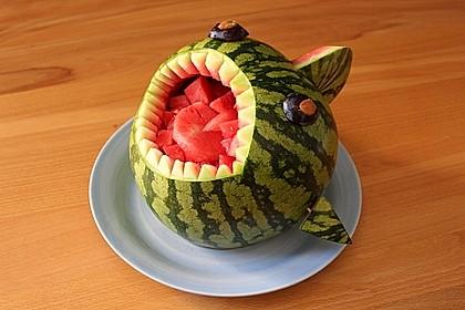 Melonen-Hai 41