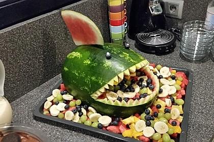 Melonen-Hai 48