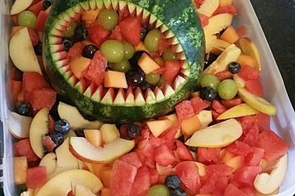 Melonen-Hai 50