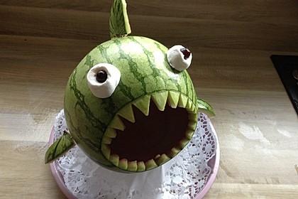 Melonen-Hai 21