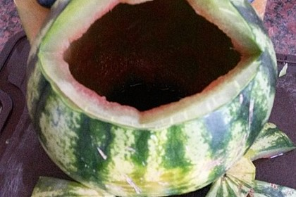 Melonen-Hai 106