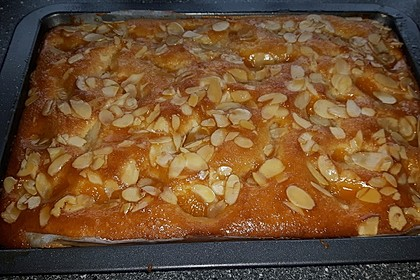 Altenburger Mandarinenkuchen 16