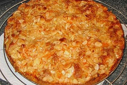 Altenburger Mandarinenkuchen 40
