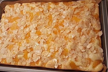 Altenburger Mandarinenkuchen 14