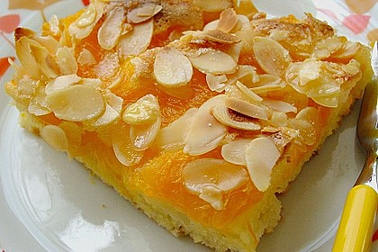 Altenburger Mandarinenkuchen 4