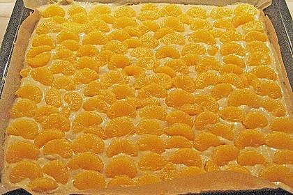 Altenburger Mandarinenkuchen 50