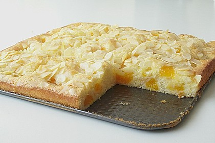 Altenburger Mandarinenkuchen 9