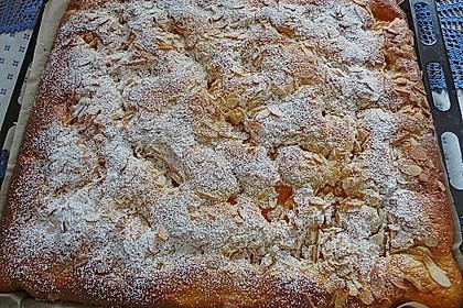 Altenburger Mandarinenkuchen 20