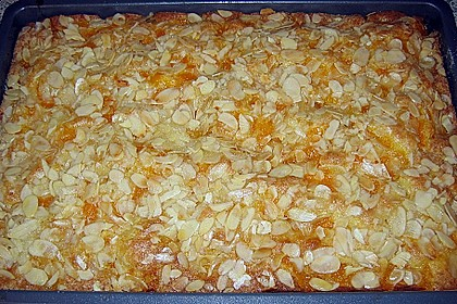 Altenburger Mandarinenkuchen 29