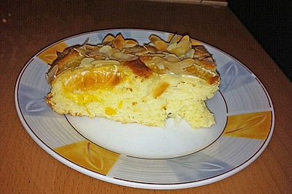 Altenburger Mandarinenkuchen 19