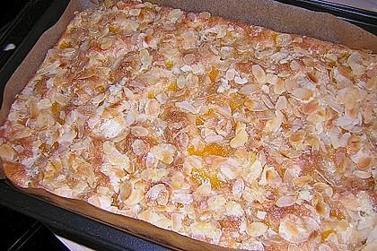 Altenburger Mandarinenkuchen 42
