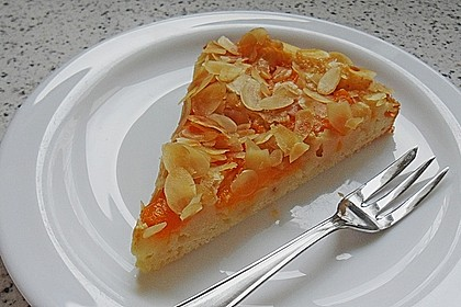 Altenburger Mandarinenkuchen 3