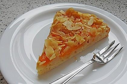 Altenburger Mandarinenkuchen 5