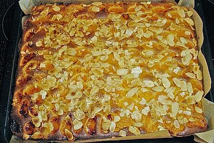 Altenburger Mandarinenkuchen 41