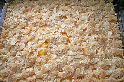 Altenburger Mandarinenkuchen 6