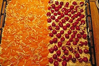Altenburger Mandarinenkuchen 19