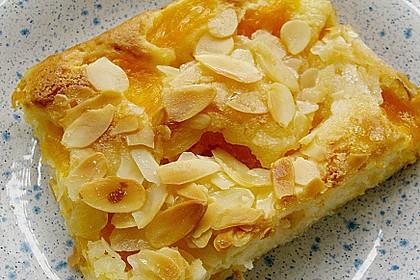 Altenburger Mandarinenkuchen 12