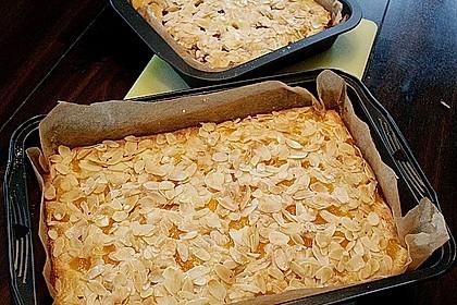 Altenburger Mandarinenkuchen 7