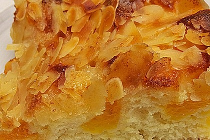 Altenburger Mandarinenkuchen 16