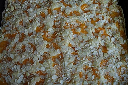 Altenburger Mandarinenkuchen 32